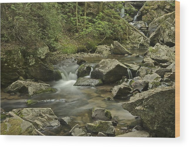 Big Pup Falls Wood Print featuring the photograph Big Pup Falls 2 by Michael Peychich