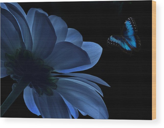 Flower Wood Print featuring the digital art Blue Beauty by Marrissia Ruth