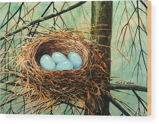 Wildlife Wood Print featuring the painting Blue Eggs In Nest by Frank Wilson