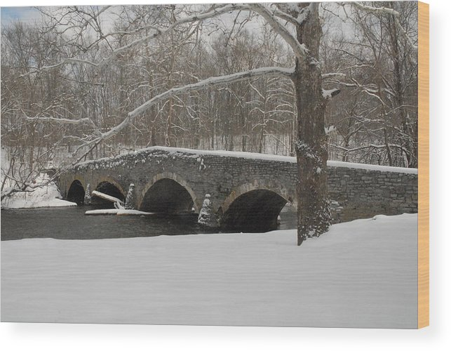 Scene Wood Print featuring the photograph Bridge In Winter by Don Van Fleet