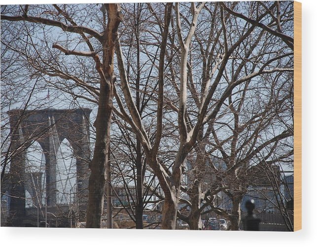 Architecture Wood Print featuring the photograph Brooklyn Bridge Thru The Trees by Rob Hans