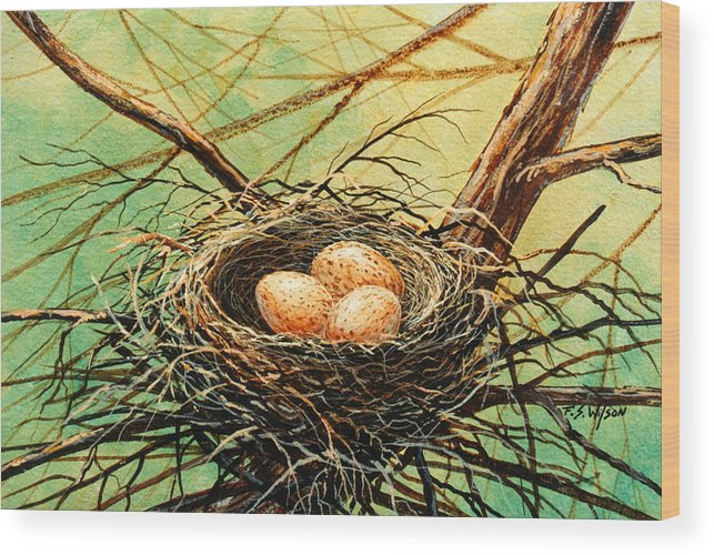 Wildlife Wood Print featuring the painting Brown Speckled Eggs by Frank Wilson