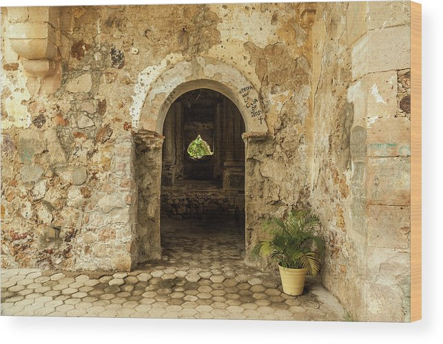 Landscape Wood Print featuring the photograph Church Ruins At El Rosario, Sinaloa by Javier Flores