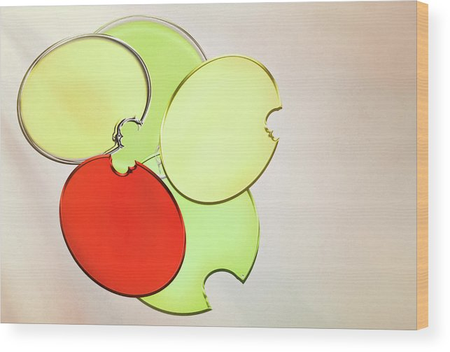 Circles Wood Print featuring the photograph Circles Of Red, Yellow And Green by Donna Lee