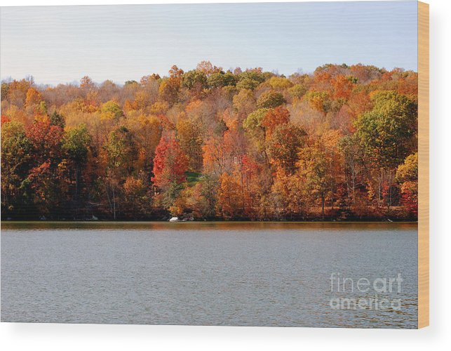 Lake Waramaug Wood Print featuring the photograph Covered Boat by Andrea Simon