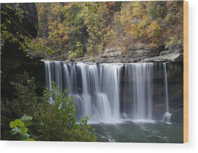 Landscape Wood Print featuring the photograph Cumberland Falls In Green by Bj Hodges