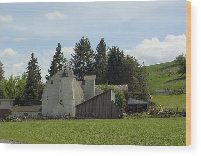 Barn Wood Print featuring the photograph Dahmen Barn Historical by Louise Magno