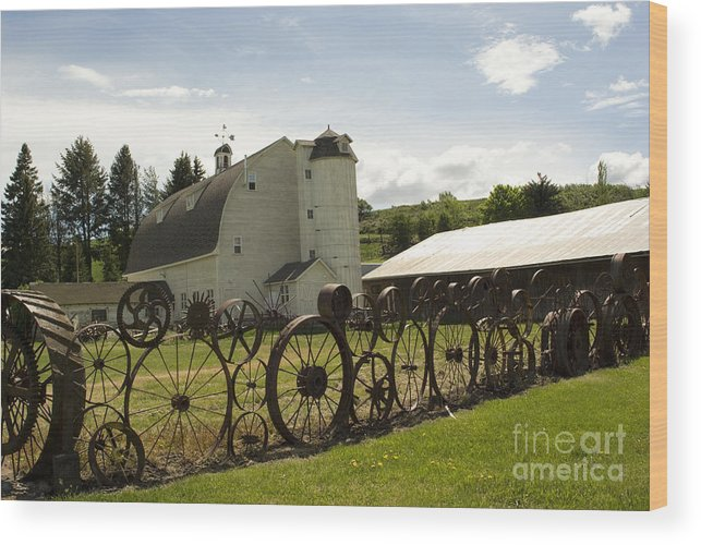 Historic Barn Wood Print featuring the photograph Dahmen Barn by Louise Magno