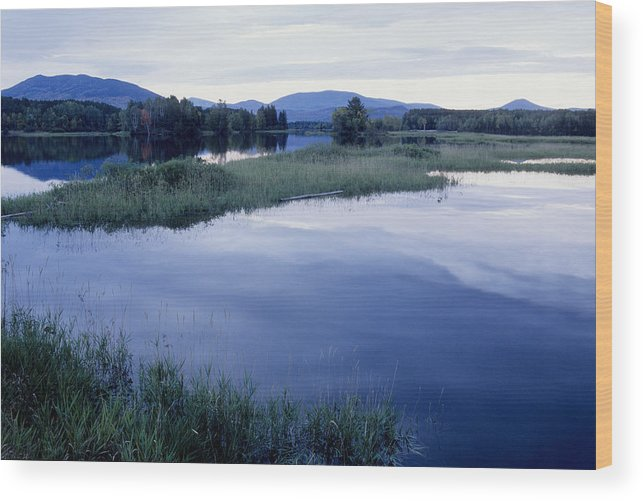 Lake Wood Print featuring the photograph Dead Lake Maine by Steve Somerville