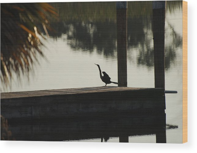 Reflections Wood Print featuring the photograph Dock Bird In Color by Rob Hans
