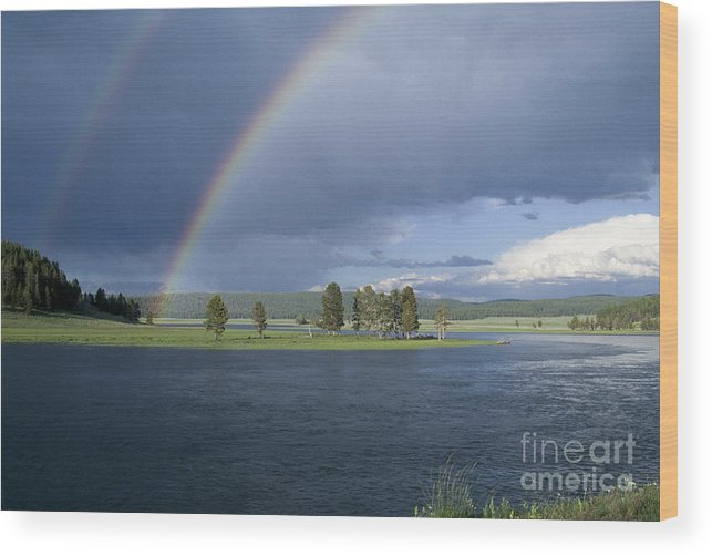 Yellowstone Wood Print featuring the photograph Double Rainbow At Alum Creek by Sandra Bronstein