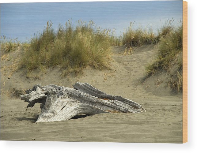 Wood Wood Print featuring the photograph Driftwood by Jessica Wakefield