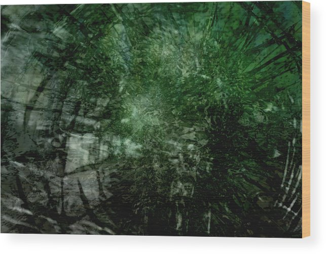 Walter's Falls Wood Print featuring the digital art Emerald by Richard Andrews