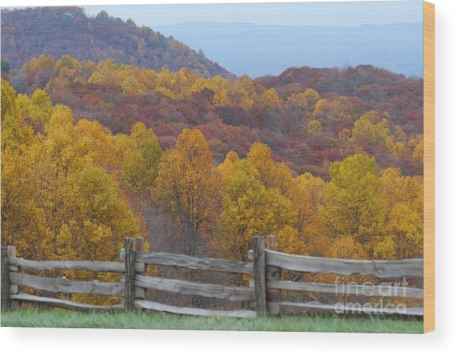 Fence Wood Print featuring the photograph Fall Blend by Eric Liller