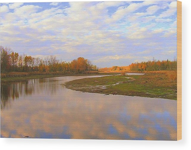 Photography Wood Print featuring the photograph Fall Picture Of The Stream by Katina Cote