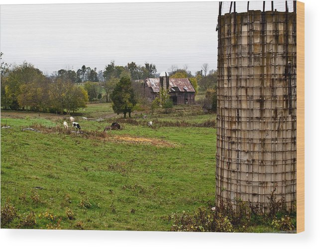 Farm Wood Print featuring the photograph Farmland by Douglas Barnett