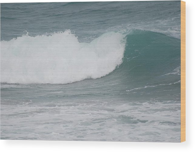 Green Wood Print featuring the photograph Fin Wave by Rob Hans
