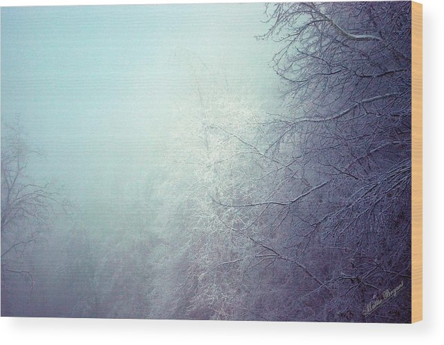 Wood Print featuring the photograph Fog And Ice by Mattie Bryant