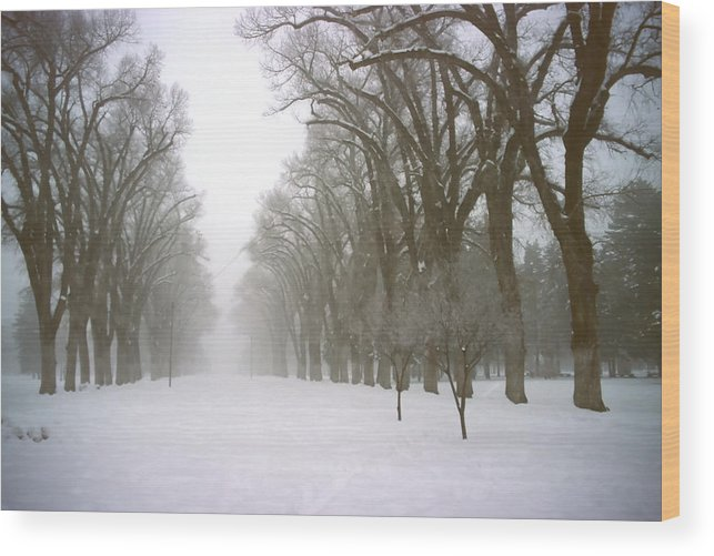 Nature Wood Print featuring the photograph Foggy Morning Landscape 4 by Steve Ohlsen