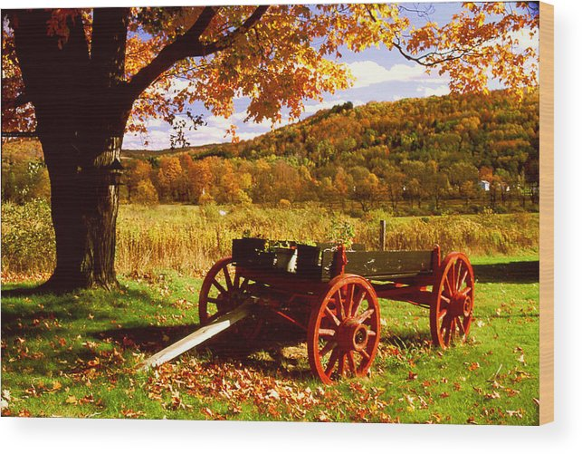 Autumn Wood Print featuring the photograph Foliage And Old Wagon by Roger Soule