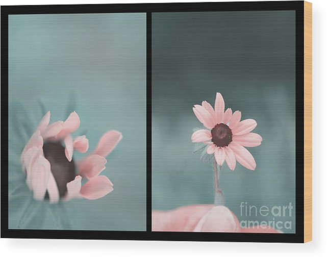 Flower Wood Print featuring the photograph For You - Diptych by Aimelle