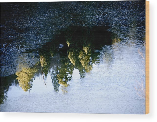 Reflection Wood Print featuring the photograph Forest Hidden In The Ice by Jon Rossiter