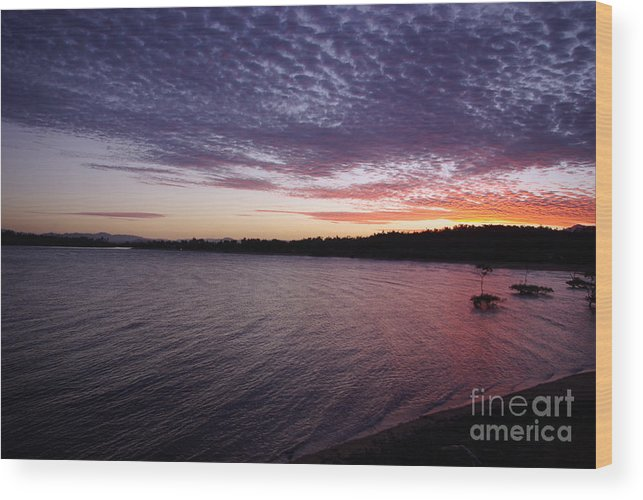 Landscape Wood Print featuring the photograph Four Elements Sunset Sequence 4 Coconuts Qld by Kerryn Madsen- Pietsch