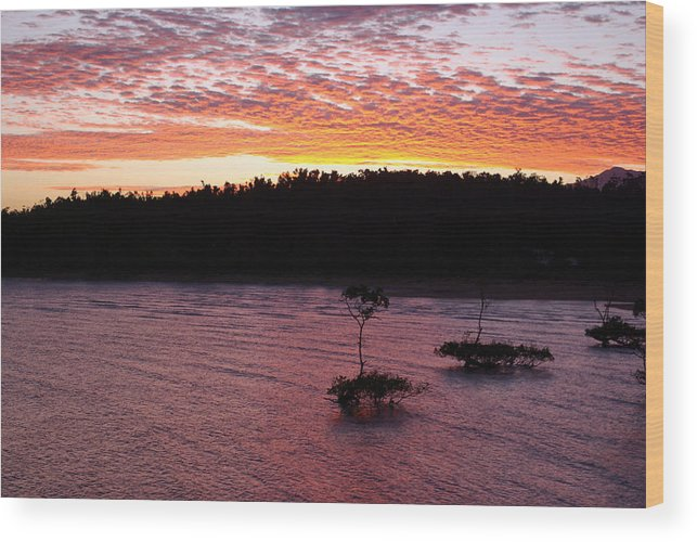 Landscape Wood Print featuring the photograph Four Elements Sunset Sequence 5 Coconuts Qld by Kerryn Madsen - Pietsch
