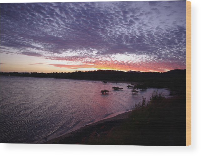 Landscape Wood Print featuring the photograph Four Elements Sunset Sequence 6 Coconuts Qld by Kerryn Madsen-Pietsch