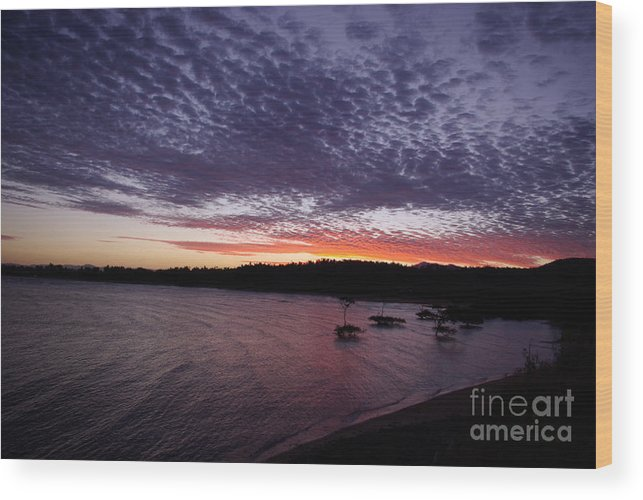 Landscape Wood Print featuring the photograph Four Elements Sunset Sequence 7 Coconuts Qld by Kerryn Madsen - Pietsch