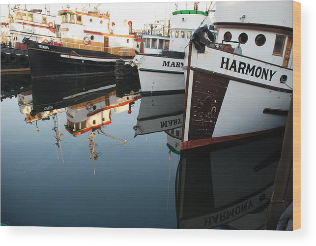Fishing Wood Print featuring the photograph Harmony by Alasdair Turner