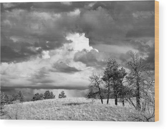 Sky Wood Print featuring the photograph High Prairie Thunderheads by Jennifer Riefenberg