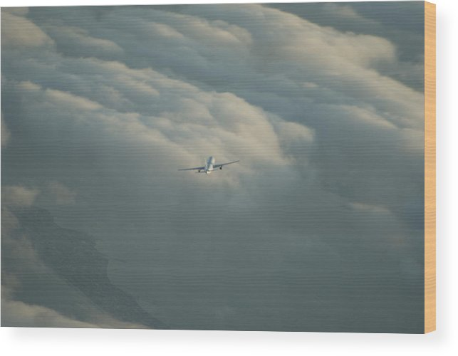 Airplane Wood Print featuring the photograph Holding by Brian Anderson