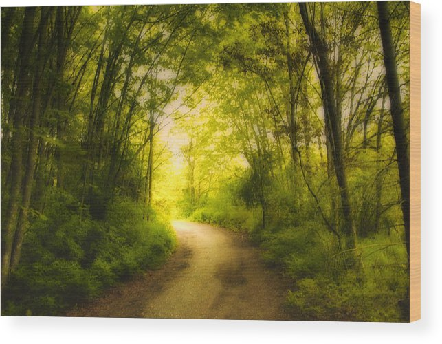 Back Roads Wood Print featuring the photograph Into The Light by Diane Smith
