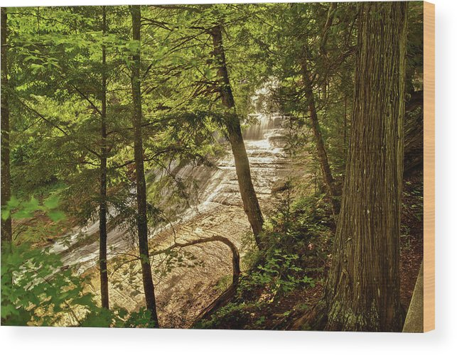 Laughing Whitefish Wood Print featuring the photograph Laughing Whitefish Falls 2 by Michael Peychich