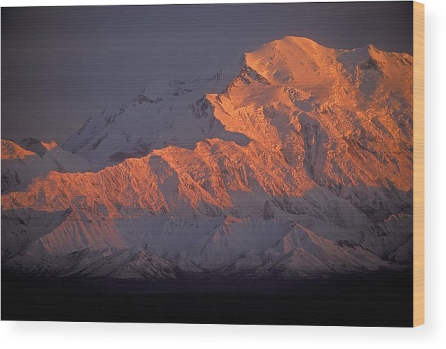 Denali National Park Wood Print featuring the photograph Mt. Mckinley Sunset by Sandra Bronstein