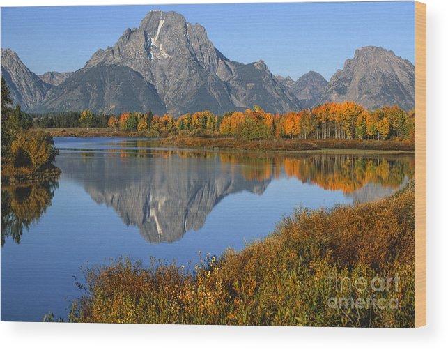 Grand Teton Wood Print featuring the photograph Mt. Moran Fall Reflection by Sandra Bronstein