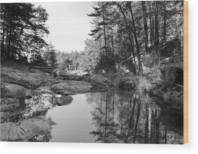 Lake Rocks Landscape Pine Canada Wood Print featuring the photograph Muskoka Country II by Andriy Zolotoiy