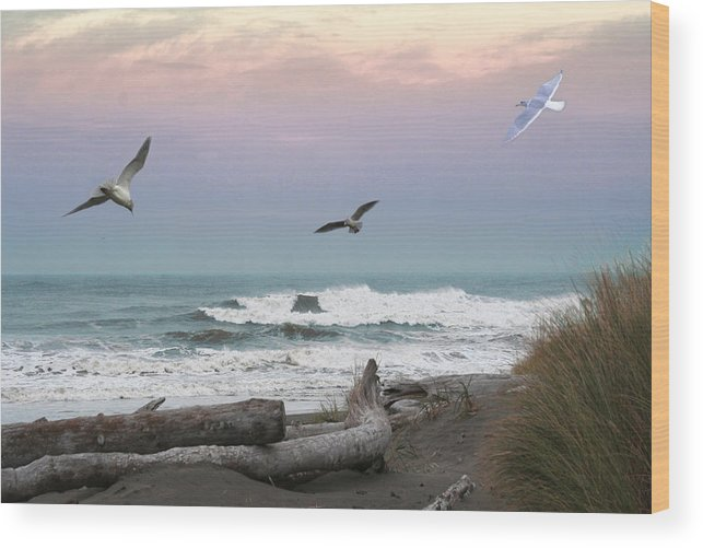 Ocean Shores Wood Print featuring the photograph Ocean Shores O1074 by Mary Gaines