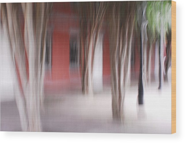 New Orleans Wood Print featuring the photograph Old New Orleans Mint by Wayne Archer