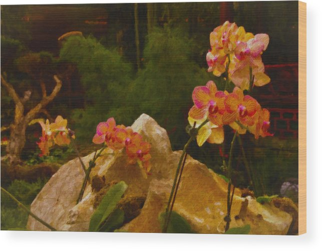 Nature Wood Print featuring the painting Orchids by Stephen Campbell