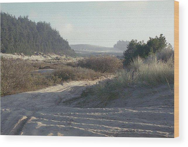 Oregon Dunes National Recreation Area Wood Print featuring the photograph Oregon Dunes 5 by Eike Kistenmacher
