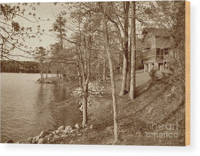 Scenic Wood Print featuring the photograph Painted Shore Camps In Sepia by Skip Willits