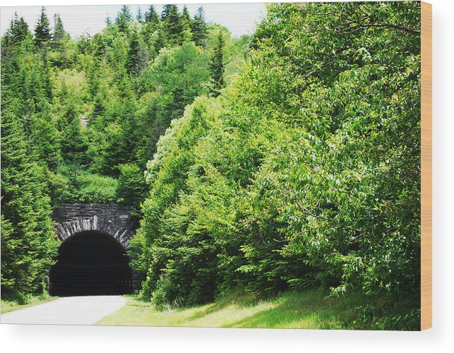 North Carolina Parkway Wood Print featuring the photograph Pisgah Tunnel by Patricia Motley