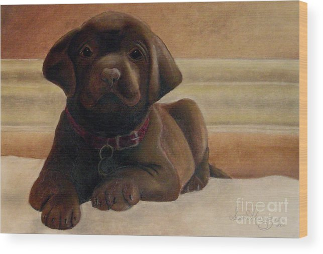 Puppy Wood Print featuring the drawing Puppy Love by Susan Clausen