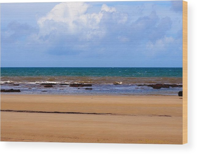 Australia Wood Print featuring the photograph Queensland Australia 2610 by PhotohogDesigns