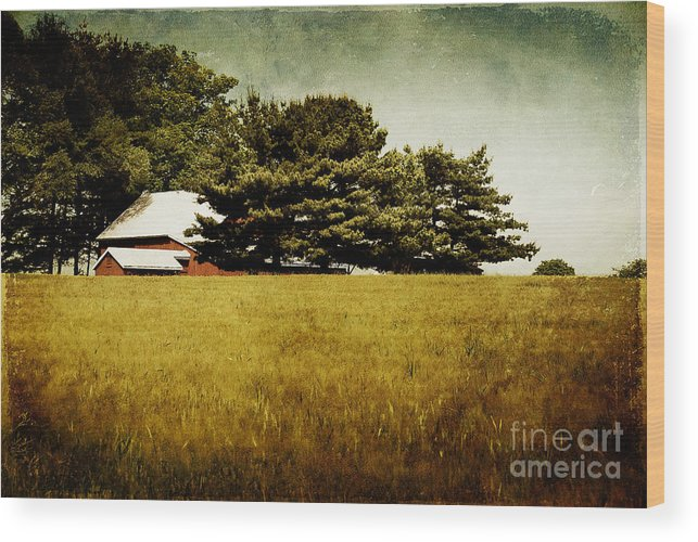 Barn Wood Print featuring the photograph Quiet by Lois Bryan