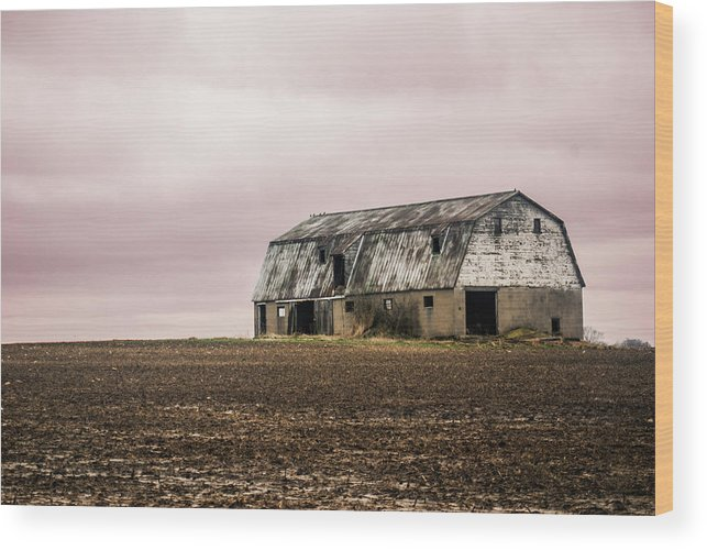 Wood Print featuring the photograph Red Sky by Melissa Newcomb
