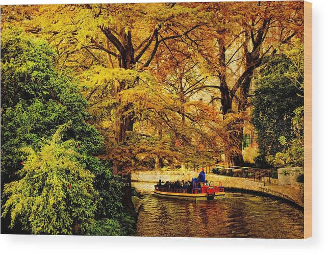 Boat Wood Print featuring the photograph Ride On The Boat by Iris Greenwell
