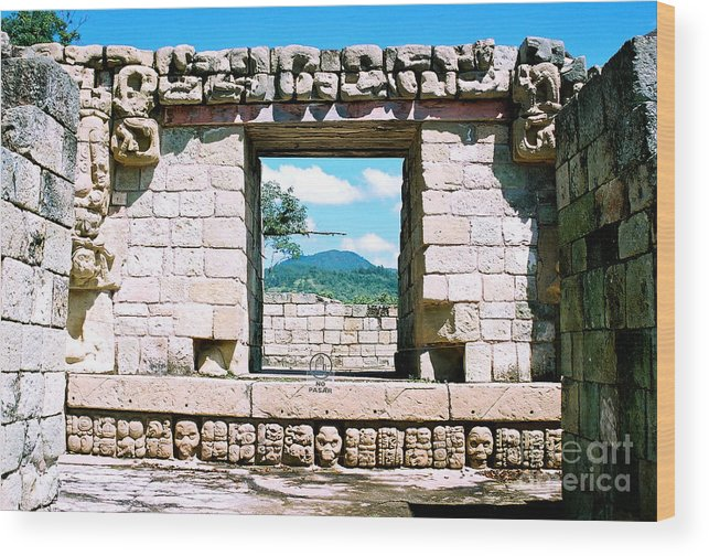 Travel Wood Print featuring the photograph Room With A View by Trude Janssen